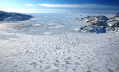 Arctic Amplification Causing Extreme Ice Melt