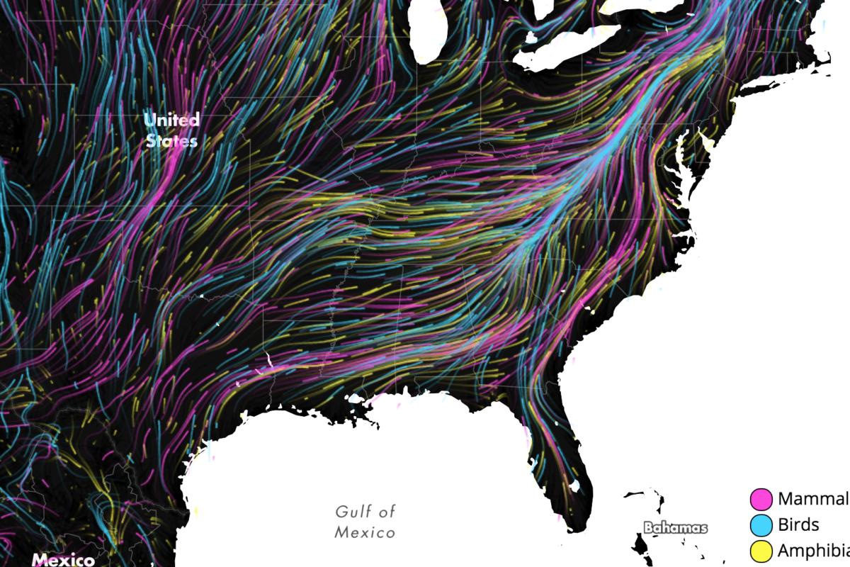 Few escape routes available for climate change-driven migration
