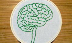 New Alzheimer's drug clears brain gunk