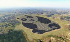 China's New 250-Acre Solar Panda Makes Sustainability Adorable