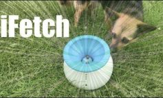 How Fetching is the iFetch?