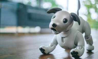Sony's New Robotic Dog Has Learned Some New Tricks