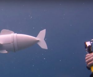 This Robotic Fish is Revolutionizing Marine Research