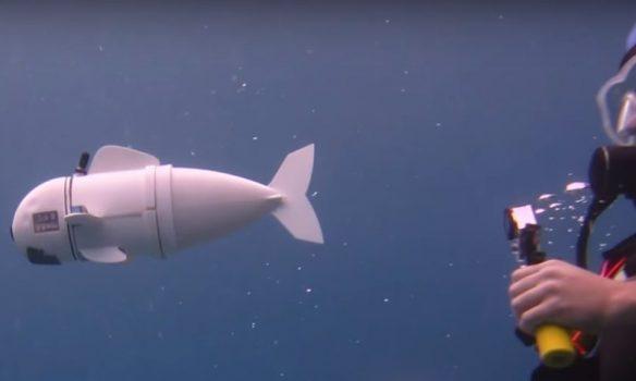 This Robotic Fish is Revolutionizing Marine Research