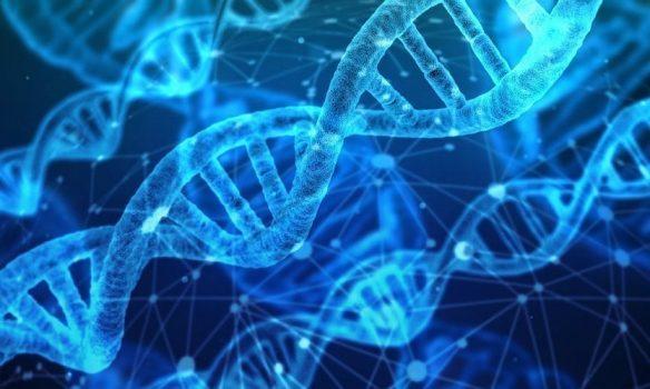 How Murietta Genomics is Incubating The Future Of Medicine in California