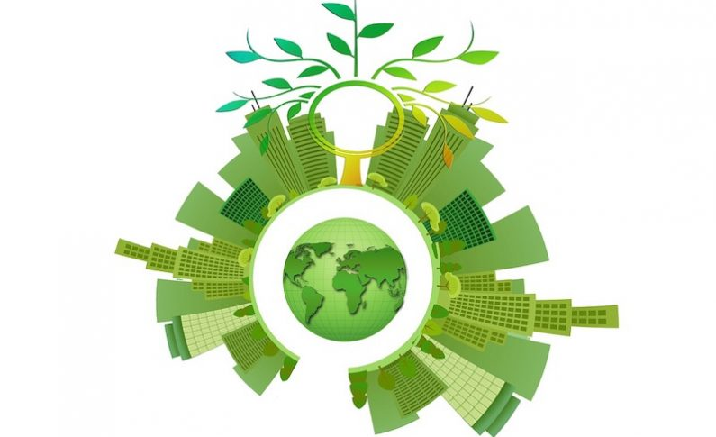 Eco-Friendly Business Practices for the Environment and Your Wallet