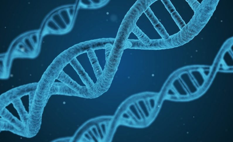 Scientists are on a path to sequencing 1 million human genomes and use big data to unlock genetic secrets