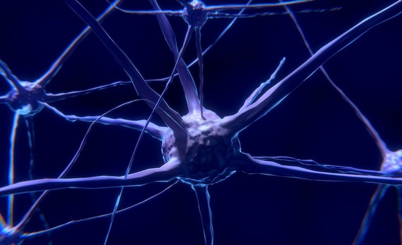 Alzheimer's Research is Gaining Steam with New Clinical Trials