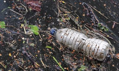 Plastic Pollution Statistics: Our Oceans in Danger