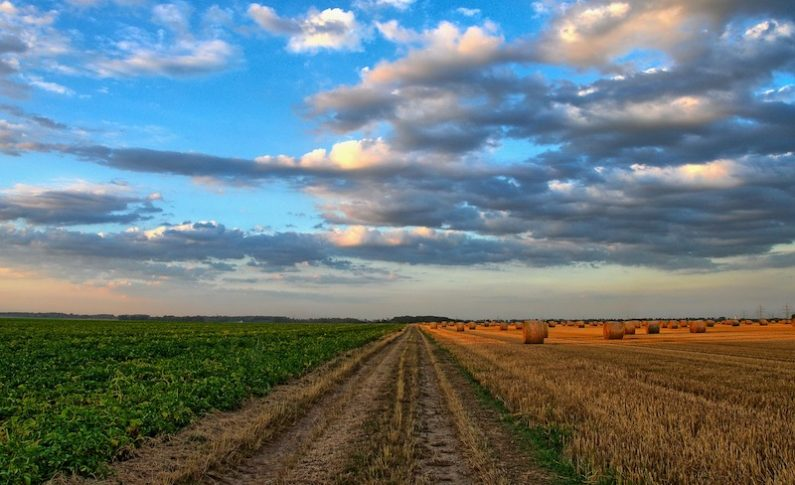 Agricultural Technology Moves into Peach County, GA