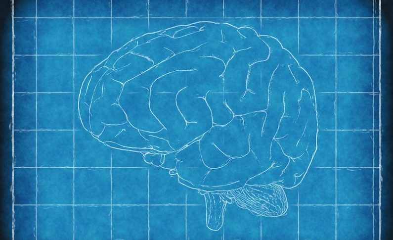 Neurofeedback: What is it and Why Should You Care?