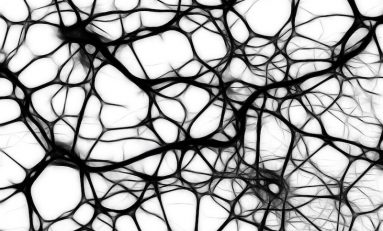 How Deep Learning Can Be Applied to Neuroradiology