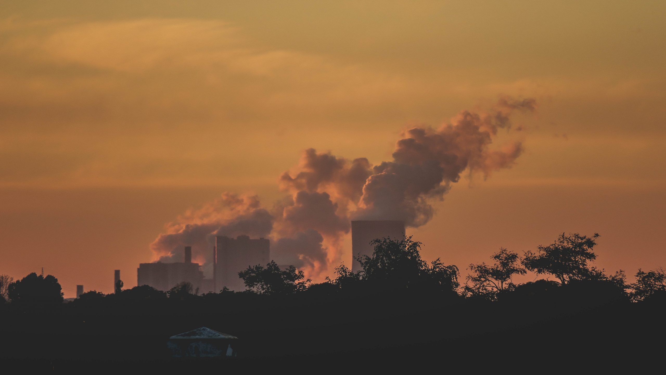 How Students Can Help Reduce Environmental Pollution
