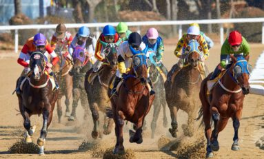A Contrarian To Win At Horse Racing