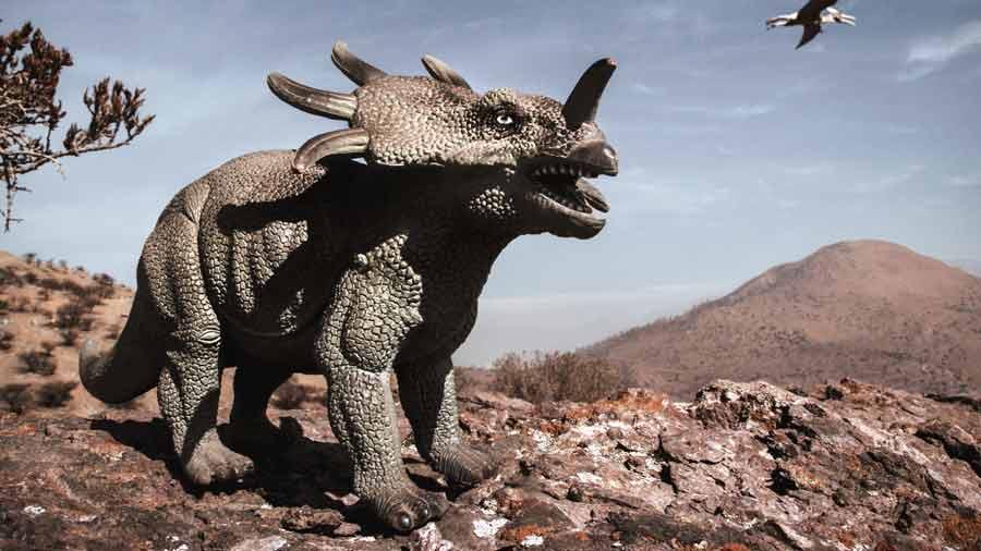 dinosaurs-dinosaur-sky-wildlife-organism-photography