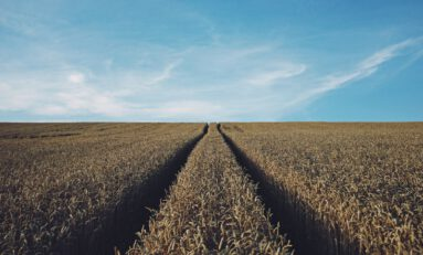 How Robotics Can Help Address the Global Food Crisis